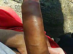 На свежем воздухе симпатичная телочка пососала смуглый член
